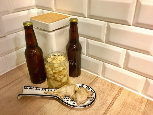 Biology lesson: teach kids about yeast and fermentation with food projects (Part 3: kombucha and ginger ale)